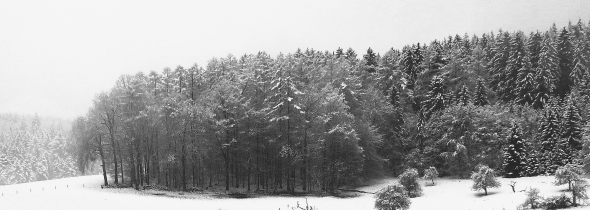 winter10b